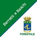 Berretti e Baschi